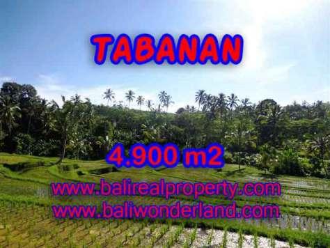 DIJUAL MURAH TANAH DI TABANAN BALI TJTB111 - PELUANG INVESTASI PROPERTY DI BALI