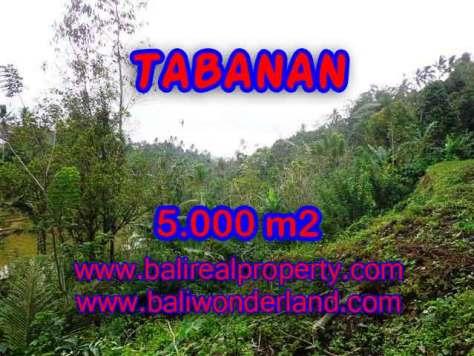 PELUANG INVESTASI PROPERTI DI BALI - TANAH DI TABANAN DIJUAL TJTB139