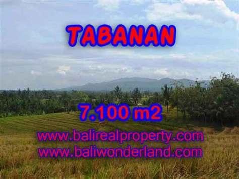 TANAH DI TABANAN MURAH TJTB125 - INVESTASI PROPERTY DI BALI