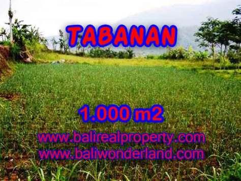 DIJUAL MURAH TANAH DI TABANAN TJTB101 - PELUANG INVESTASI PROPERTY DI BALI