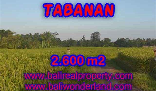 TANAH DI TABANAN DIJUAL TJTB129 - INVESTASI PROPERTY DI BALI