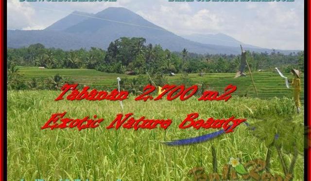 TANAH MURAH di TABANAN BALI 2.700 m2  Sawah, Gunung, Sungai dan Kota Denpasar