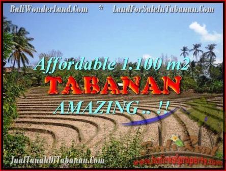 JUAL TANAH MURAH di TABANAN BALI 1.100 m2  View kebun dan sawah
