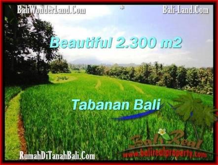 JUAL TANAH di TABANAN 23 Are View Gunung dan sawah