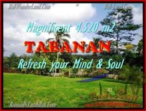 JUAL TANAH MURAH di TABANAN BALI 45,2 Are View sawah dan kebun