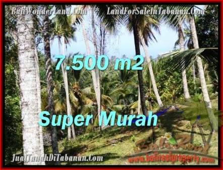 TANAH JUAL MURAH TABANAN 7,500 m2 View Kebun dan sungai