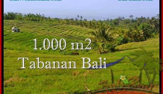 TANAH DIJUAL MURAH di TABANAN BALI TJTB237