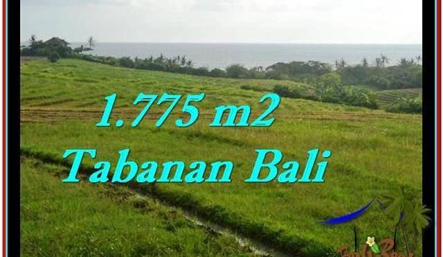JUAL TANAH MURAH di TABANAN BALI 1,775 m2 View sawah, laut dan gunung