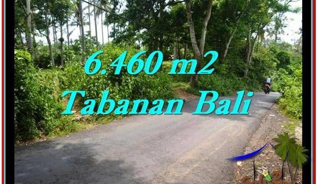 TANAH JUAL MURAH TABANAN 64.6 Are View kebun dan laut