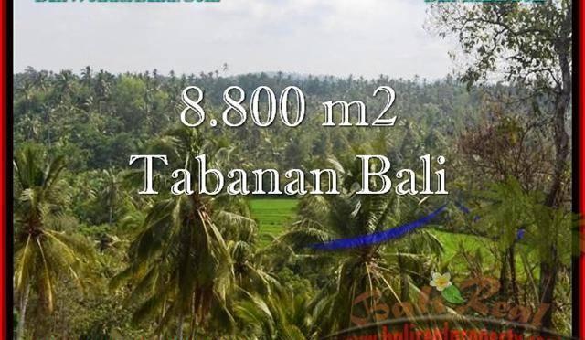 JUAL TANAH MURAH di TABANAN 8,800 m2 View laut, Sawah dan Gunung