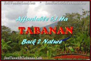 JUAL TANAH di TABANAN 51,100 m2  View gunung dan laut singaraja