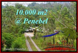 TANAH di  TABANAN JUAL MURAH 100 Are View Gunung, sawah jatiluwih
