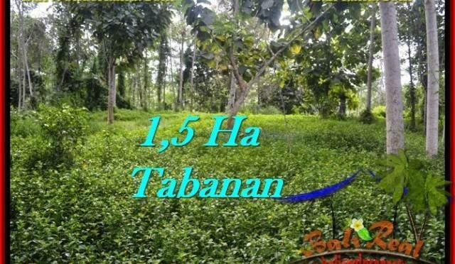 TANAH DIJUAL MURAH di TABANAN 15,550 m2 di Tabanan Penebel