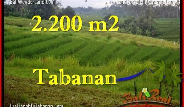 TANAH di TABANAN BALI DIJUAL MURAH 2,200 m2 di Tabanan Selemadeg