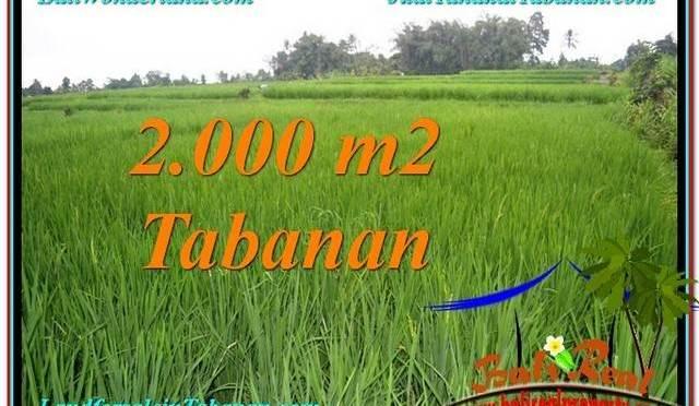 JUAL TANAH MURAH di TABANAN BALI 2,000 m2  View Sawah