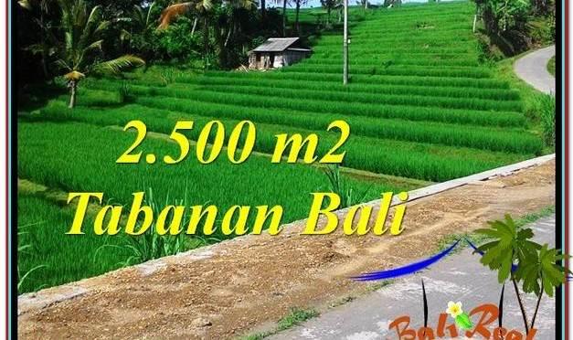 JUAL TANAH MURAH di TABANAN BALI 2,500 m2 View Sawah dan Sungai