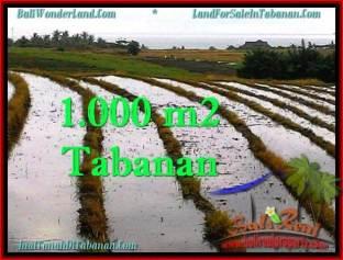 JUAL TANAH MURAH di TABANAN BALI TJTB261