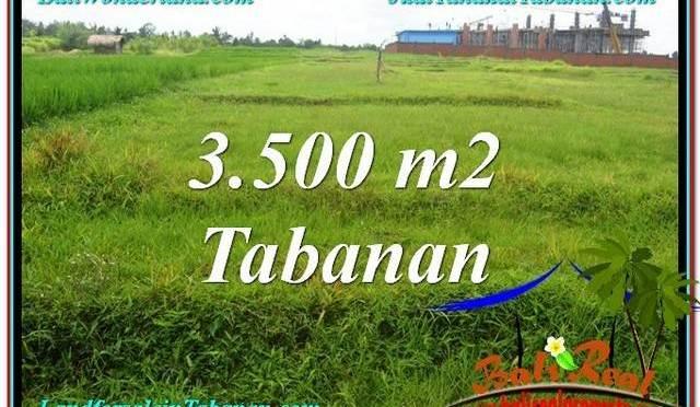 TANAH DIJUAL MURAH di TABANAN Untuk INVESTASI TJTB302