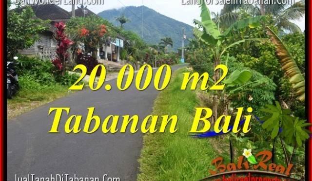 JUAL TANAH MURAH di TABANAN BALI 200 Are View gunung dan sawah
