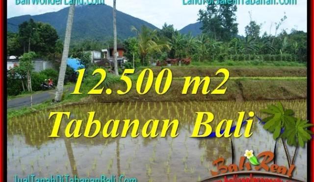 DIJUAL MURAH TANAH di TABANAN BALI 125 Are di Tabanan Penebel