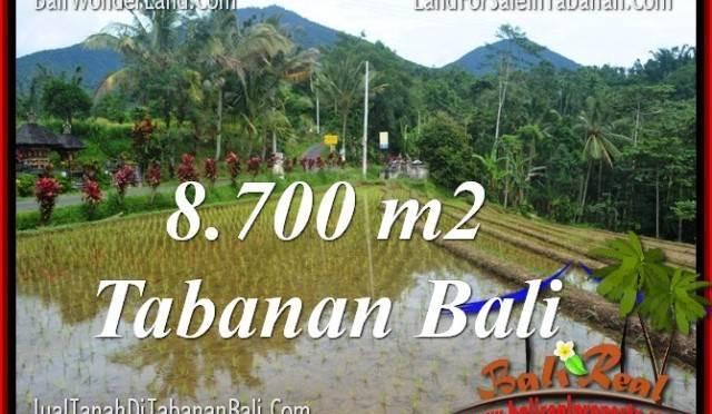 TANAH di TABANAN DIJUAL MURAH 87 Are di Tabanan Penebel