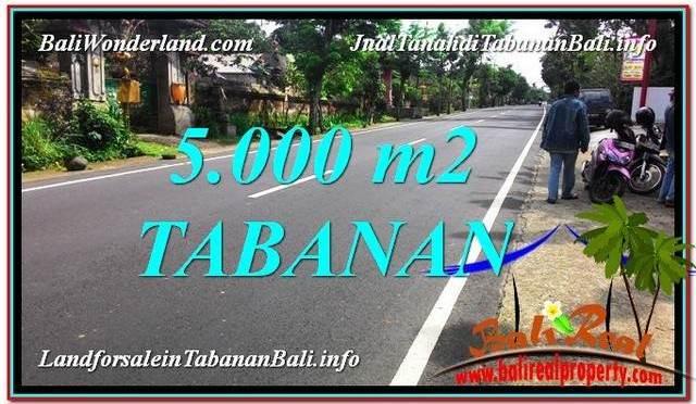 INVESTASI PROPERTY, TANAH MURAH di TABANAN BALI DIJUAL TJTB332