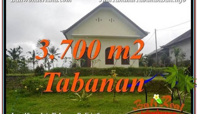 INVESTASI PROPERTY, TANAH di TABANAN BALI DIJUAL MURAH TJTB336