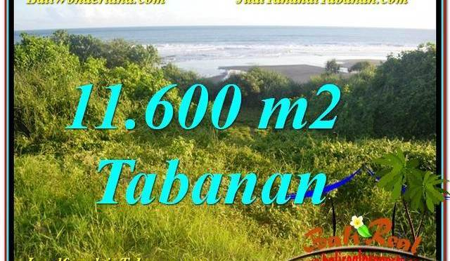 INVESTASI PROPERTY, JUAL TANAH di TABANAN TJTB340
