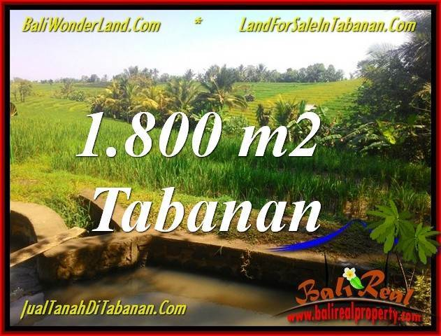 TANAH DIJUAL di TABANAN BALI 18 Are View sawah