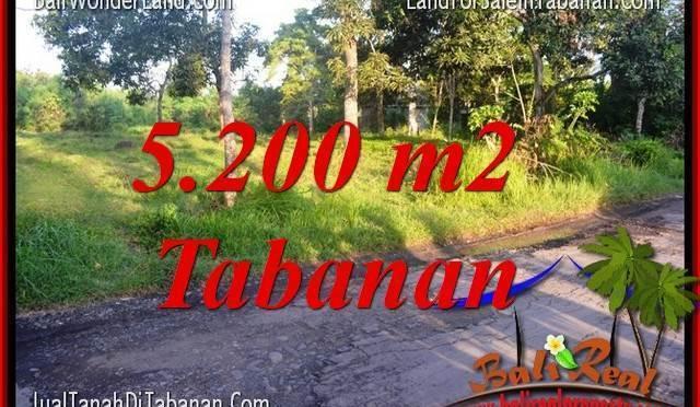 TANAH MURAH di TABANAN JUAL 5,200 m2 View Kebun dan Sungai