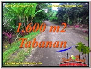TANAH MURAH di TABANAN BALI DIJUAL 1,600 m2 View Kebun dan Sungai