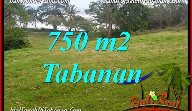 TANAH di TABANAN DIJUAL MURAH 750 m2 di Tabanan Selemadeg