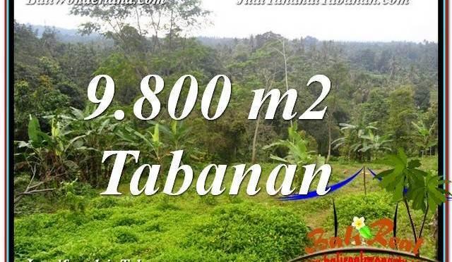 JUAL TANAH MURAH di TABANAN BALI 9,800 m2  View Laut dan sawah
