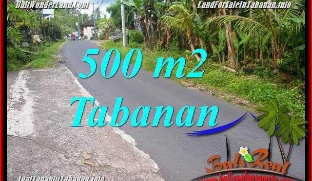 JUAL TANAH MURAH di TABANAN BALI Untuk INVESTASI TJTB362