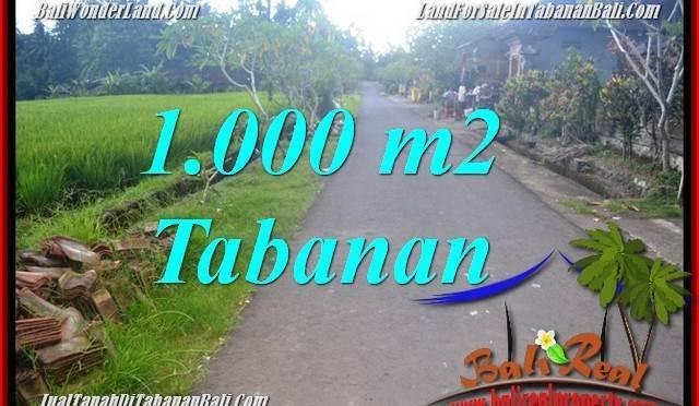 DIJUAL MURAH TANAH di TABANAN BALI Untuk INVESTASI TJTB363