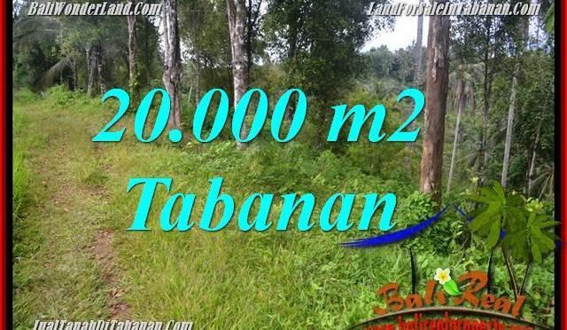 INVESTASI PROPERTY, JUAL TANAH MURAH di TABANAN TJTB365