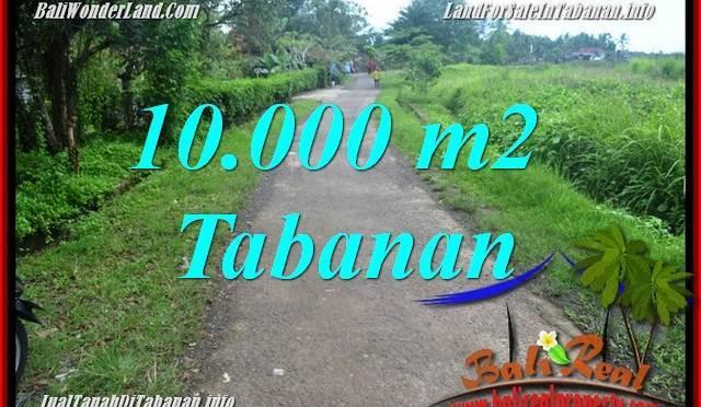 JUAL MURAH TANAH di TABANAN 10,000 m2  View sawah