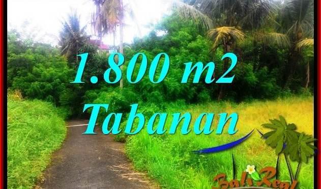 JUAL TANAH di TABANAN BALI 18.5 Are View sawah