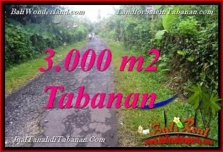 JUAL TANAH MURAH di TABANAN 3,000 m2 View kebun