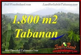 JUAL TANAH MURAH di TABANAN BALI 1,800 m2  View Gunung
