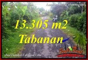 TANAH di TABANAN BALI DIJUAL MURAH 133.05 Are View Kebun dan Sungai