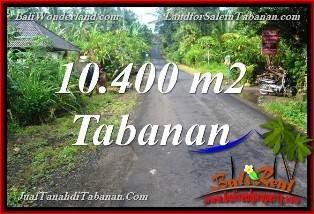 TANAH DIJUAL di TABANAN BALI 104 Are View Kebun dan Sungai