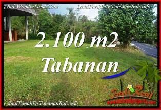 JUAL MURAH TANAH di TABANAN BALI 21 Are VIEW KEBUN