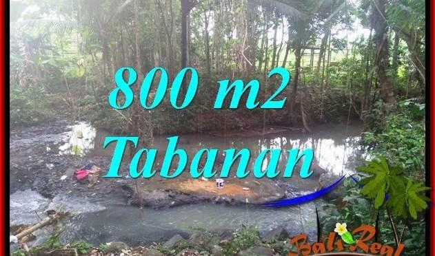 TANAH di TABANAN BALI DIJUAL MURAH 8 Are VIEW KEBUN DAN SUNGAI