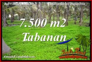 JUAL MURAH TANAH di TABANAN 7,500 m2 VIEW KEBUN, LINGKUNGAN VILLA