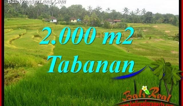 JUAL Tanah MURAH di Tabanan Untuk Investasi TJTB396