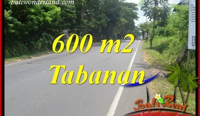 Dijual Murah Tanah di Tabanan Bali 6 Are di Tabanan Kerambitan