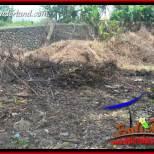 Tanah di Tabanan Bali Dijual Murah Untuk Investasi TJTB401
