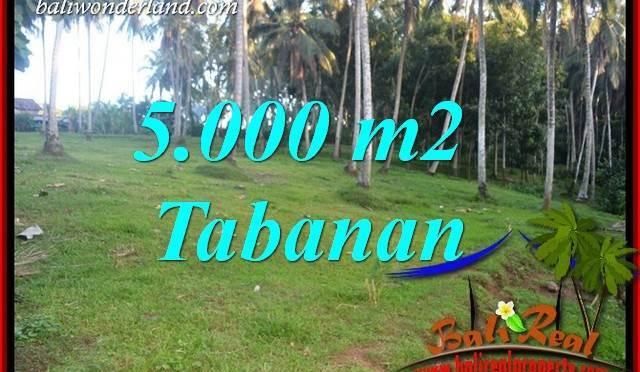 Dijual Murah Tanah di Tabanan Bali TJTB408