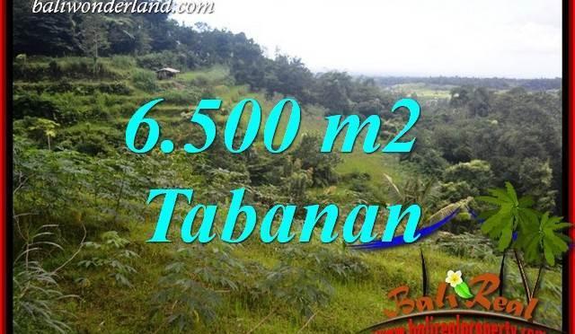 JUAL Murah Tanah di Tabanan Bali 65 Are View Gunung dan Sawah